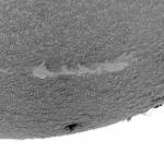 Protubérances et filaments solaires (négatif) du 6/4/2015 à 12:45 TU